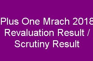 Plus One revaluation result 2018, Scrutiny result